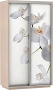 Шкаф-купе 2х дв с фотопечатью Орхидея Белая
